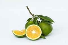Sweet Orange with leaf Stock Photo