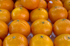 Sweet Oranges Royalty Free Stock Photography