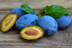 Sweet organic plums Stock Images