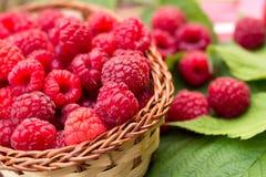 Sweet Organic Raspberries in a Basket Stock Photography