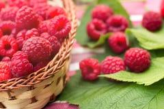 Sweet Organic Raspberries in a Basket Stock Photo