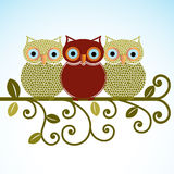 Sweet Owls on a perch. Three owls roosting on a branch - friendship, community, family   different concept Stock Photography