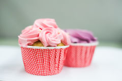 Sweet pastel cupcakes Stock Images