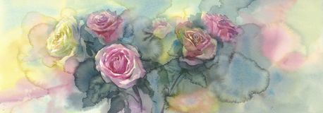 Sweet pastel roses colorful background watercolor Royalty Free Stock Image