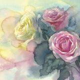 Sweet pastel roses colorful background watercolor Stock Photos