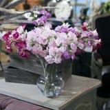 Sweet pea. Flowers composition in retro interior. sweet pea Stock Photos