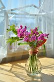 The sweet pea bouquet stock photography