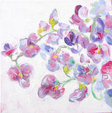 Sweet pea flowers brunches. Still-life painting. Royalty Free Stock Photography