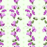 Sweet pea flowers and leaves vertical style seamless vector pattern with green polka dots vector illustration