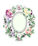 Sweet pea frame. Decorative floral frame from sweet pea flowers and leafs Royalty Free Stock Image