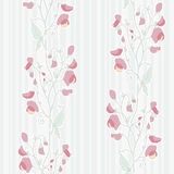 Sweet pea pattern. Seamless pattern with sweet pea ornament Stock Photos
