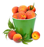 Sweet peaches Stock Photography