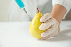 Sweet pear, genetic engineering Stock Photography