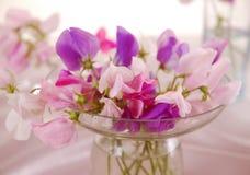 Sweet peas flower Royalty Free Stock Photo