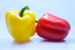 Sweet peeper, Bell pepper, Capsicum. Isolated on white background Stock Images