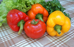 Sweet pepper Royalty Free Stock Photography