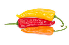 Sweet pepper. Red, yellow and orange pepper on a white background Royalty Free Stock Photography