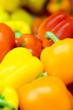 Sweet pepper background Stock Images
