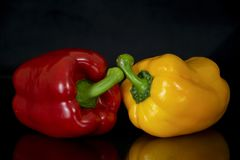Bell pepper. Yellow and red on a black background stock images