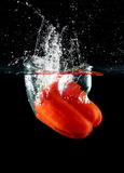 Sweet pepper drop into water. On black background Stock Image