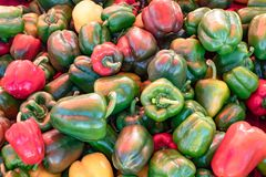 Sweet pepper, Green and red. Sweet pepper, Green and red in Thailand stock photos