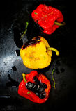 Sweet pepper a grill on a baking sheet Royalty Free Stock Image