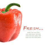Sweet pepper isolated on the white Stock Photos