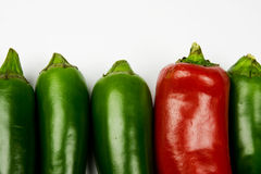 Sweet pepper, paprika. Sweet pepper, red and green paprika Stock Photo