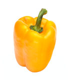 Sweet pepper (paprika) isolated Royalty Free Stock Image