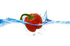 Sweet pepper thrown in the water Royalty Free Stock Images