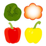 Sweet pepper vector Royalty Free Stock Image