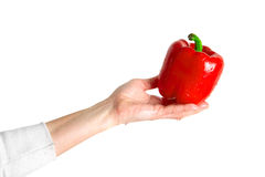 Sweet pepper on a white background Stock Photography