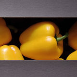 Sweet pepper. Sweet yellow pepper in the packag Royalty Free Stock Photos