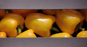 Sweet pepper. Sweet yellow pepper in the packag Stock Photo