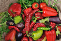 Sweet peppers, chili peppers on a sackcloth. Sweet peppers, chili peppers in on a sackcloth together with a tomato Royalty Free Stock Photo