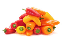 Sweet peppers of different colors. Some sweet peppers of different colors, orange, red and yellow, on a white background Royalty Free Stock Images