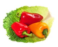 Sweet peppers on leaf of savoy cabbage Royalty Free Stock Photography