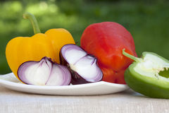 Sweet peppers and onions Royalty Free Stock Photo