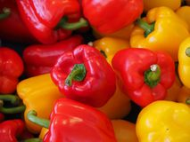 Sweet Peppers, Paprika, Red Royalty Free Stock Photos
