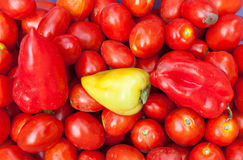Sweet peppers and tomatoes Stock Images