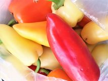 Sweet peppers in a transparent package. Sweet peppers different colors in a transparent package stock photos