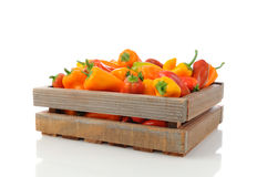 Sweet Peppers in Wood Crate Stock Image