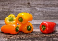 Sweet peppers on wooden table background Royalty Free Stock Image