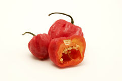 Sweet pimento peppers Stock Photography