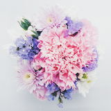 Sweet Pink bouquet on white background. Pink and purple flowers bouquet on white background Stock Images