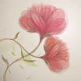 Sweet pink flowers Royalty Free Stock Images