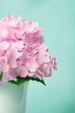 The sweet pink  hydrangea flowers in white vase , vintage style Stock Images