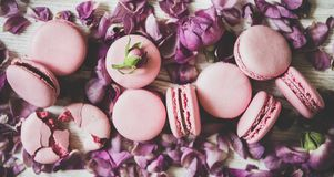 Sweet pink macaron cookies and rose buds and petals, close-up royalty free stock photos