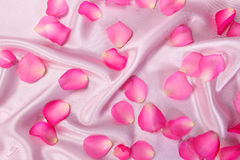 Sweet pink roses  petal on  soft pink silk fabric , romance and Stock Photo