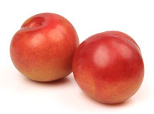 Sweet plum Stock Photos